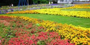 Erfurt, Stadt der Gärten